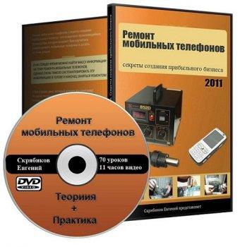 Евгений Скрябиков. Ремонт мобильных телефонов. Видеокурс